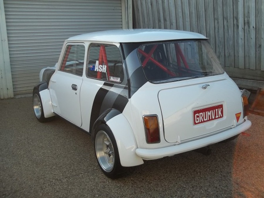 Mini Multipoint Bolt-In Roll Cage - FIA Mini Sport