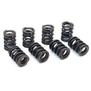 Progressive Double Valve Spring Set - 240lb