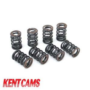 Kent Double Valve Spring Set