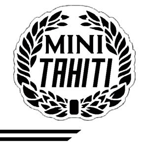 Cooper Look-a-Like Decal Kit - Tahiti - Black