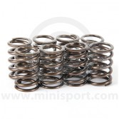 Kent Single Valve Spring Set KENVS49