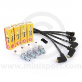 NGK Spark Plug & Intermotor Ignition Lead Set