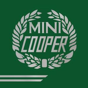 John Cooper Styling Kit - Laurels & Side Stripes - Silver
