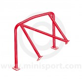 RED - LHD fixed diagonal Rear Roll Cage